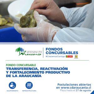 Corporación de Desarrollo Araucanía lanza formalmente sus Fondos Concursables por la reactivación y el fortalecimiento productivo de la región.
