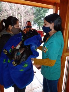 Exitoso Operativo de Esterilización de Mascotas realizó el municipio a través del Programa Municipal de Tenencia Responsable de Mascotas .
